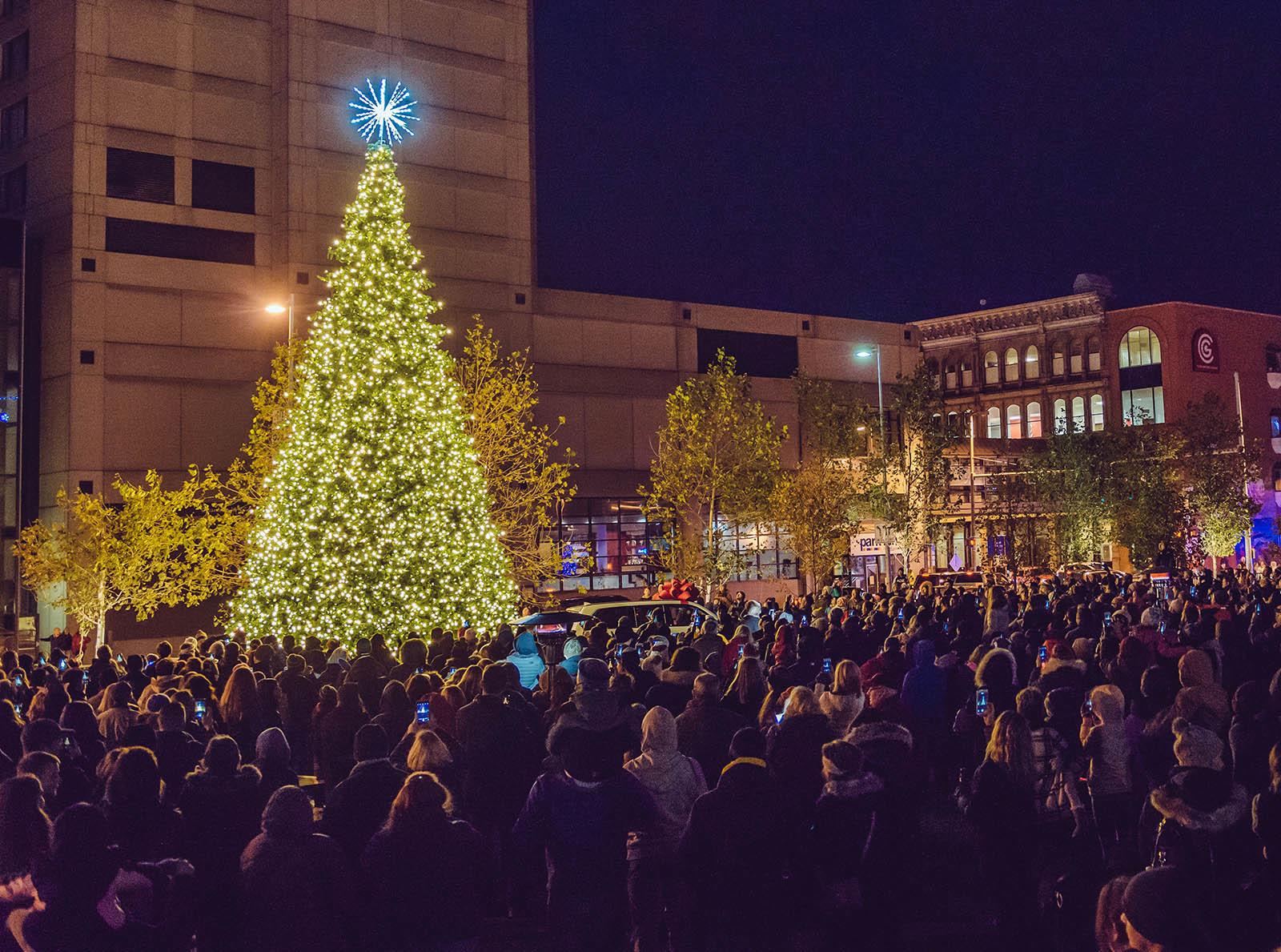 hensvilleparkchristmastree.jpg